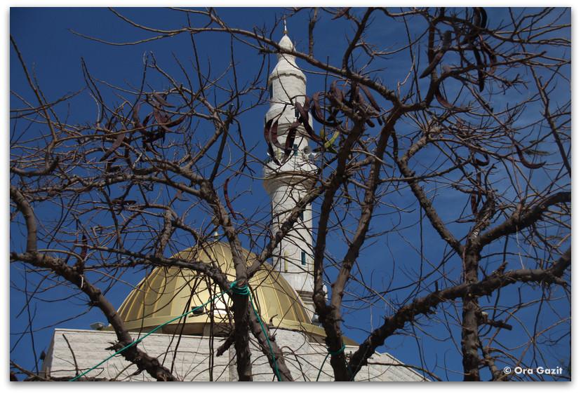 מסגד - ג'סר א זרקא