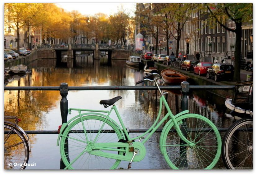 אופניים, שלכת, אמסטרדם