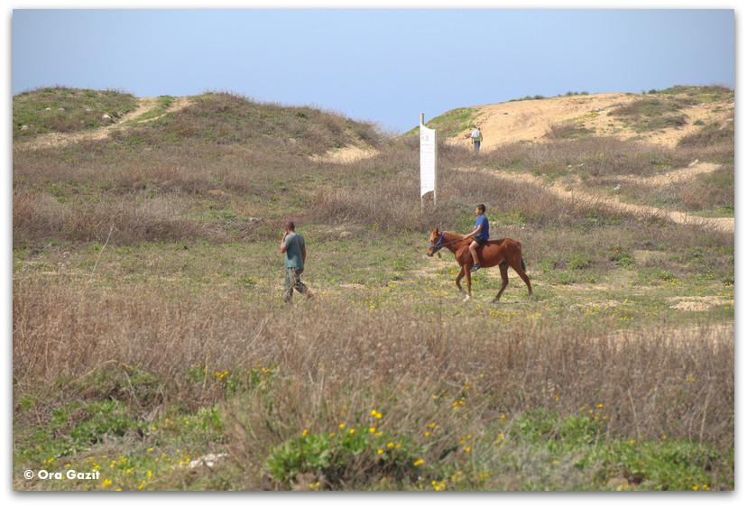 ילד רוכב על סוס - ג'סר א זרקא