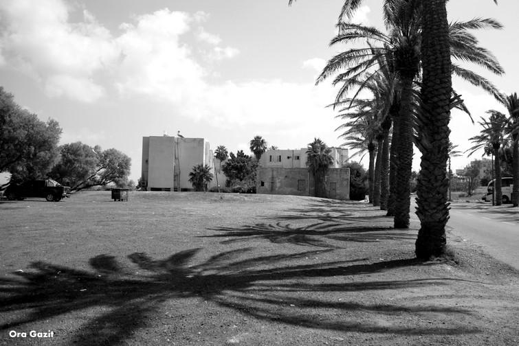 בת גלים - שביל חיפה - טרק - טיול בחיפה