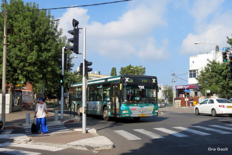 אוטובוס - שביל חיפה - טרק - טיול בחיפה