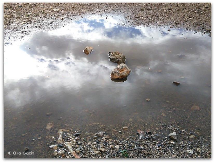 אבנים בשלולית - חלומות שמורים, בלוג