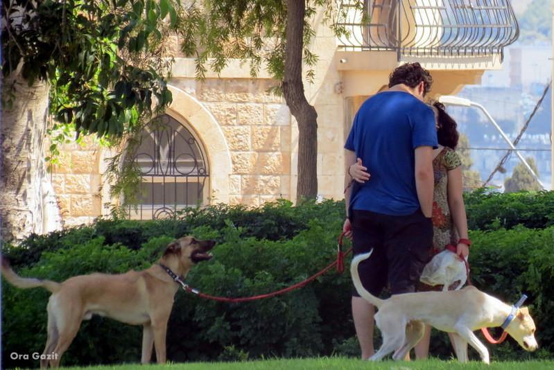זוג אוהבים - הדר - שביל חיפה - טרק - טיול בחיפה