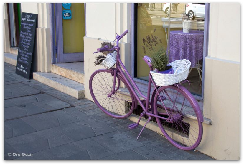 אופניים סגולים - טיול בבודפשט - הונגריה