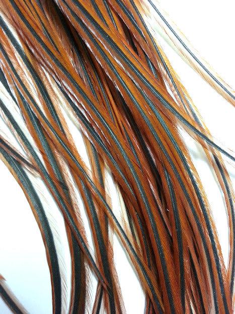 5 plumes de coq brun naturel