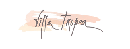 logo fond transparent site internet.png
