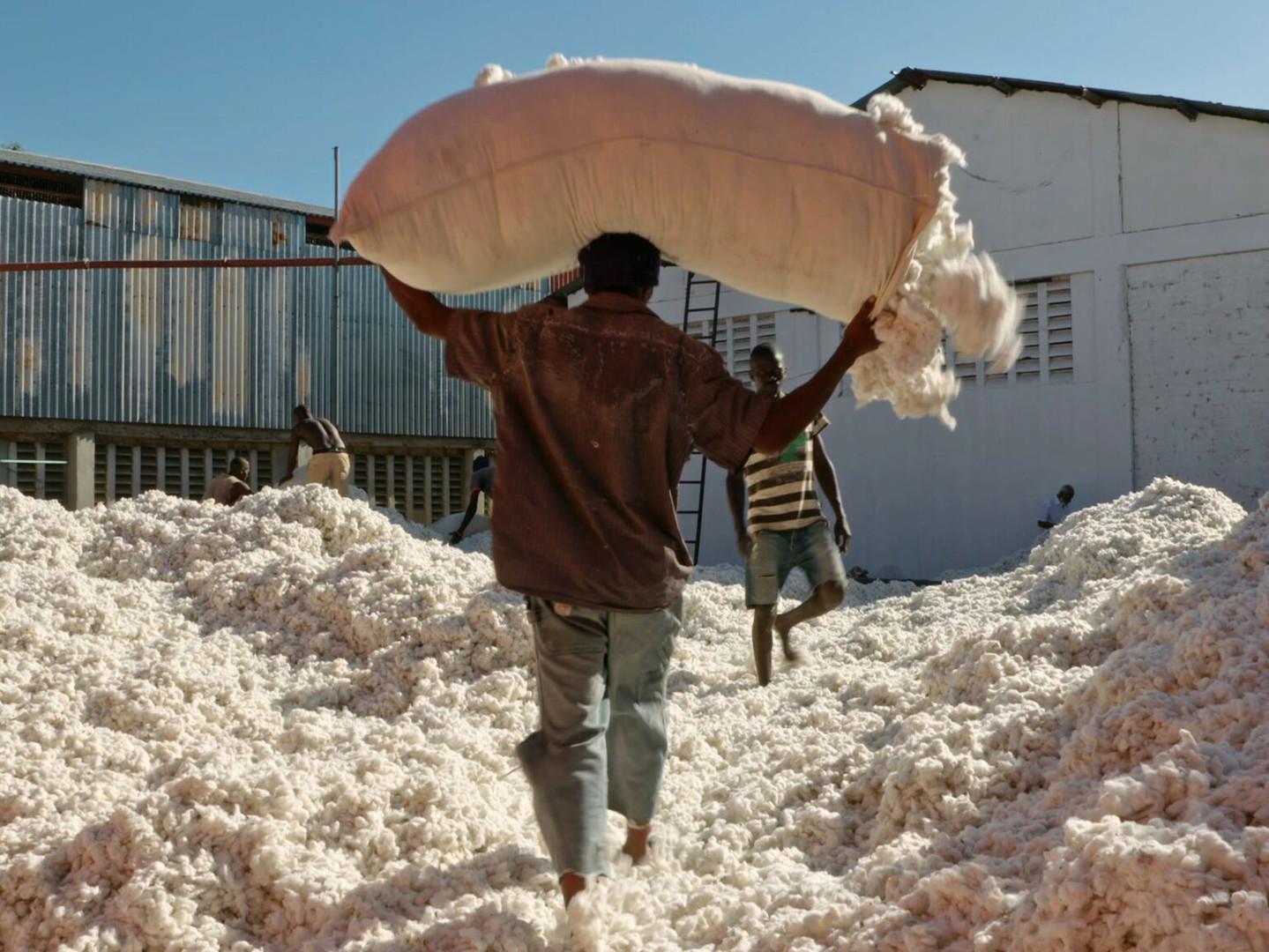 סדרת הקרנות סרטים חברתיים בשיתוף ארגון מזון