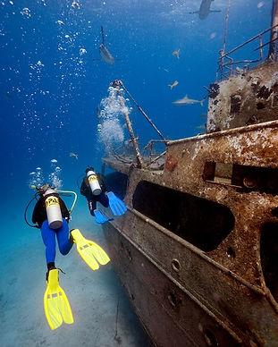 Bahamas09_2250.jpg