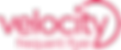velocity-logo.png