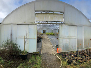February 2018: Clean Polytunnel and new Raised Beds