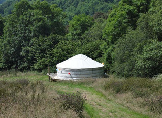 June 2012: Yurt erected and bees arrive