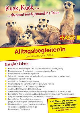 Altagsbegleiter_Gröditz.jpg