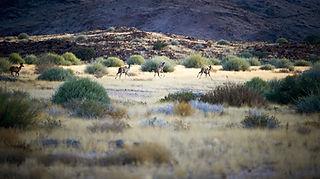 Nature Reserve 1.jpg