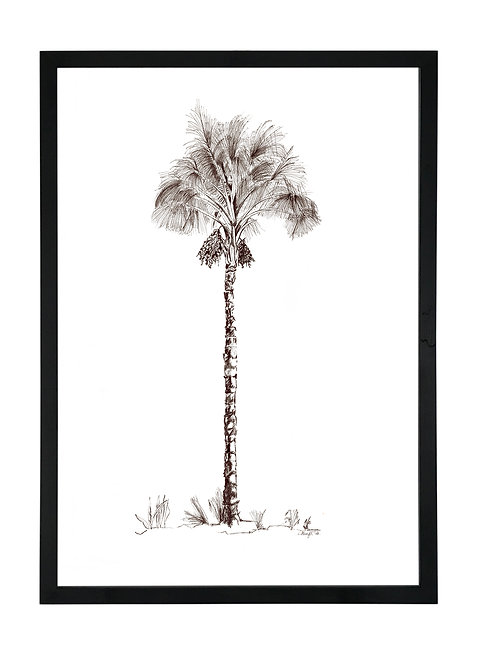 Date Palm in Black Birch Ply