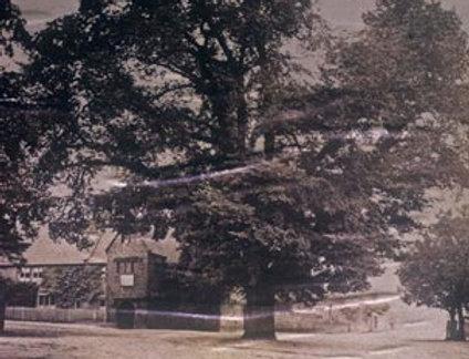 Cross Tree, Blackamoors Head and Green, 1868