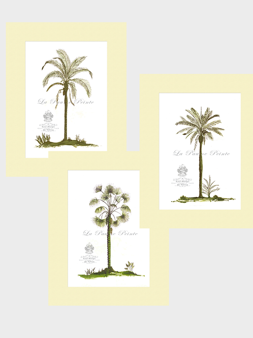 Set of 3 Classic Palm Mounted Prints (A3)
