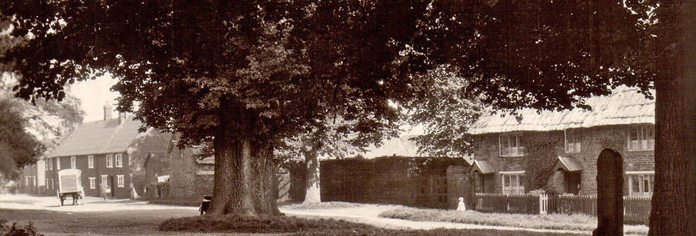 Postcard, The Green with Trees, circa WW1