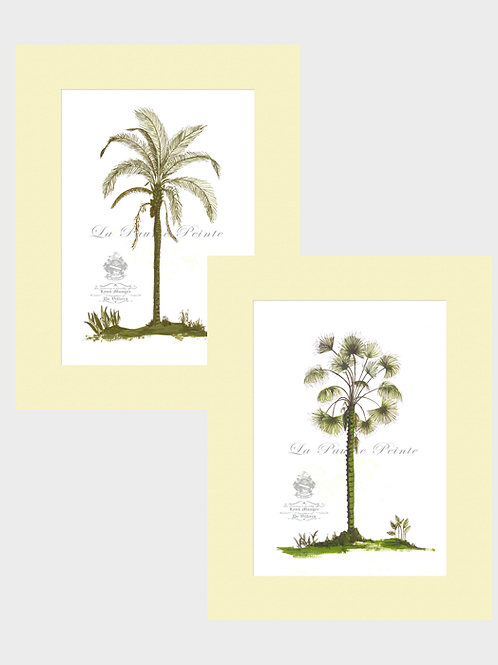 Set of 2 Classic Palm Mounted Prints (A3)