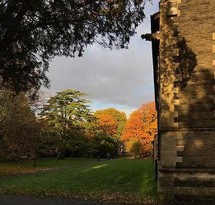 autumn sunshine.jpg