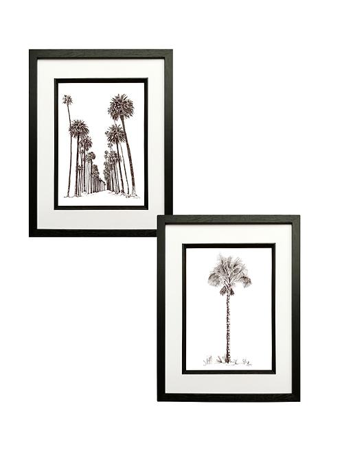 Set of 2 Pen & Ink Palms (A3) in Black Box Frame