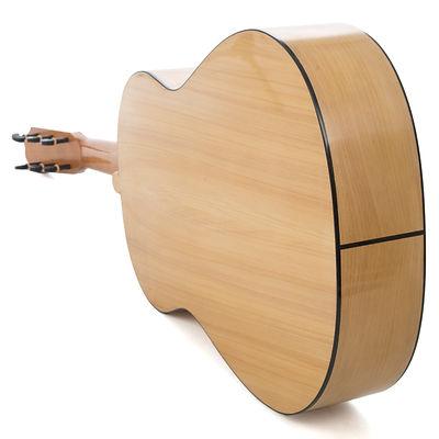 Flamenco 4.jpg