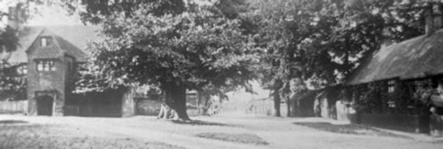 Cross Tree and The Green and Men's Club