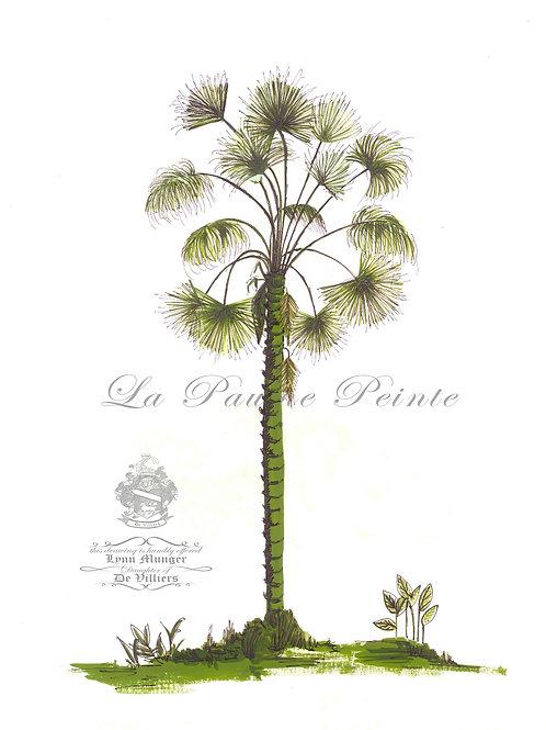 Fan Palm Print (A3)
