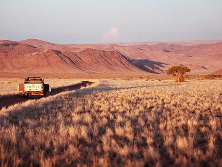 Discover Sandfontein