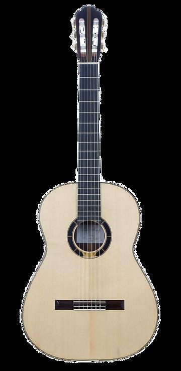 guitar-1_edited_edited_edited.png
