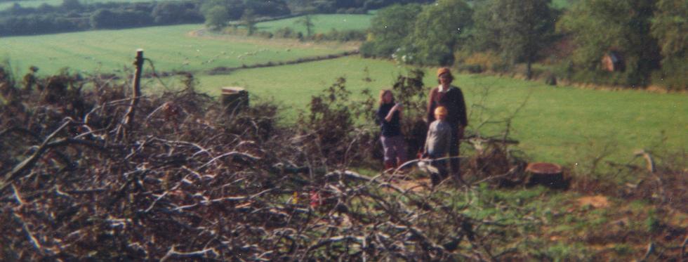 Cutting Wood, c1976