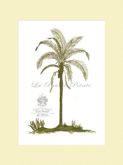Andean Palm Mounted Print (A3)