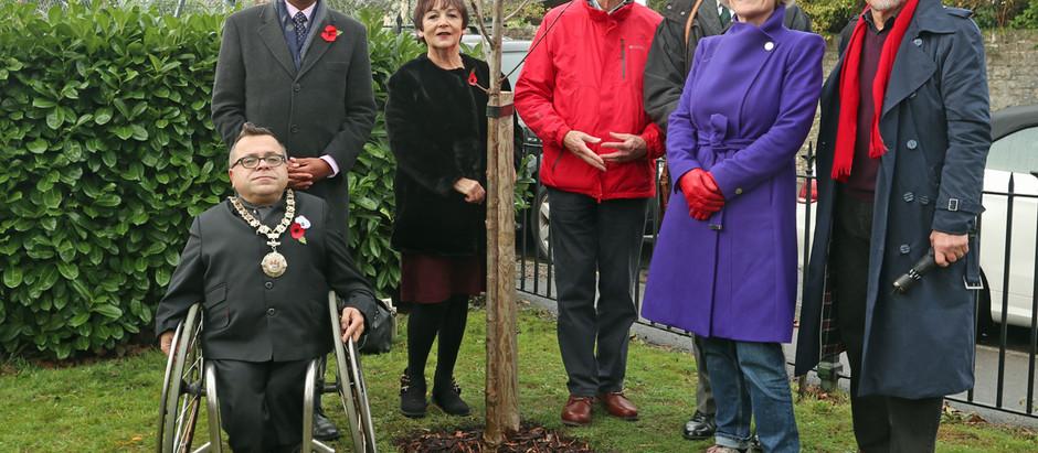 Armistice day Tree memorial