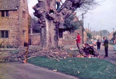 Demolition of Cross Tree on Green, 1978