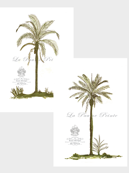 Set of 2 Classic Palm Prints (A3 Unmounted))