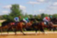 horse-racing-2107381_1920.jpg
