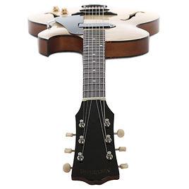 guitar2-8.jpg