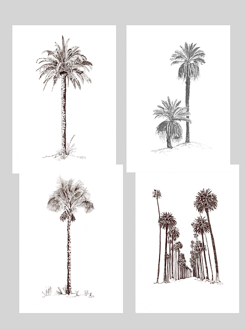 Set of 4 Pen & Ink Palms (A1) Unframed