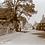 Thumbnail: High Street c 1910s