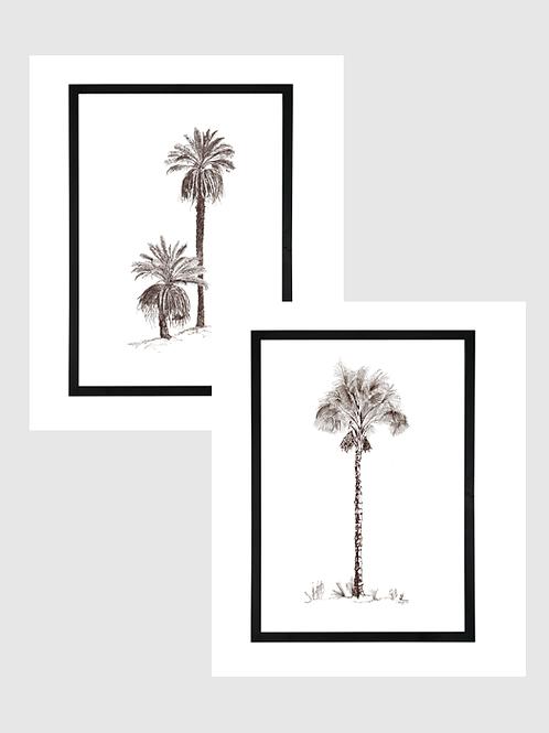 Set of 2 - A1 Pen & Ink Palms in Black Birch Ply Frame