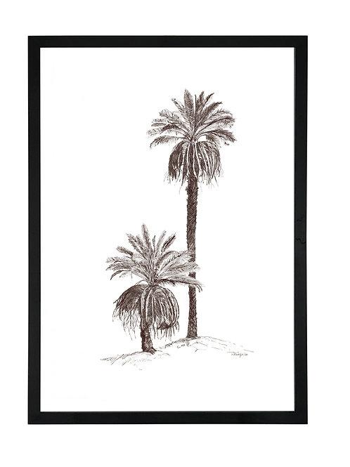 Desert Palm in Black Birch Ply