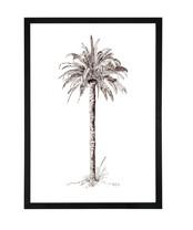 King Palm A1 Black Birch Frame.jpg