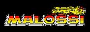 Malossi LOGO.png