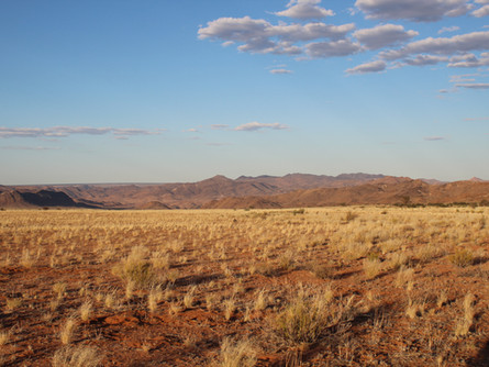 How to plan your family vacation in Namibia