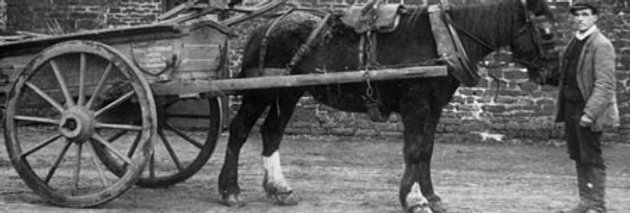 George Edden with Pettifer's Cart