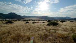 Take a game drive through Sandfontein Nature Reserve
