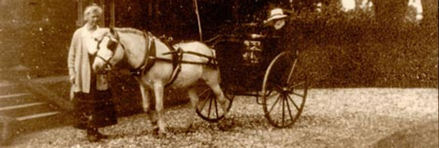 The Rev Lewis in a Dog Cart, c1920