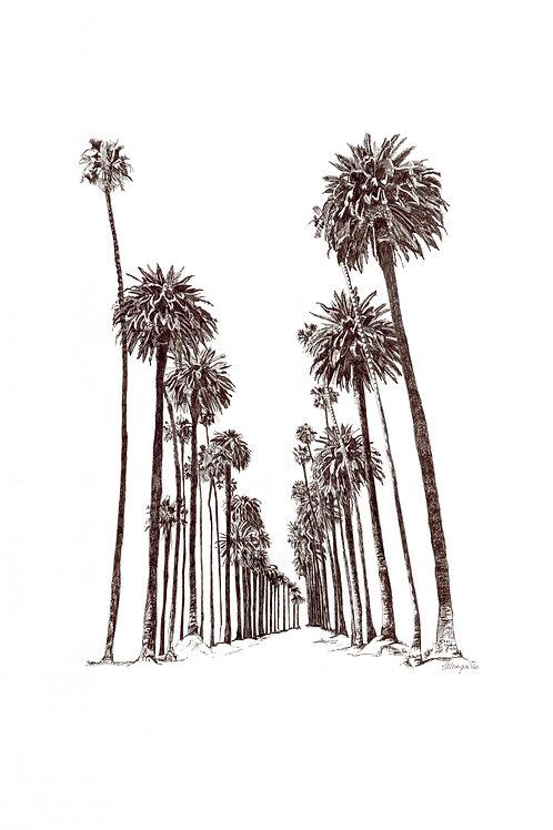 Palm Avenue (unframed) A3