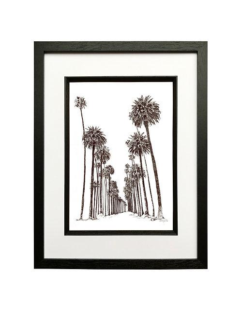 Palm Avenue in Black Box Frame