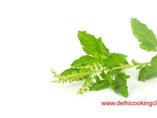 What Is Tulsi and What Are Its Benefits