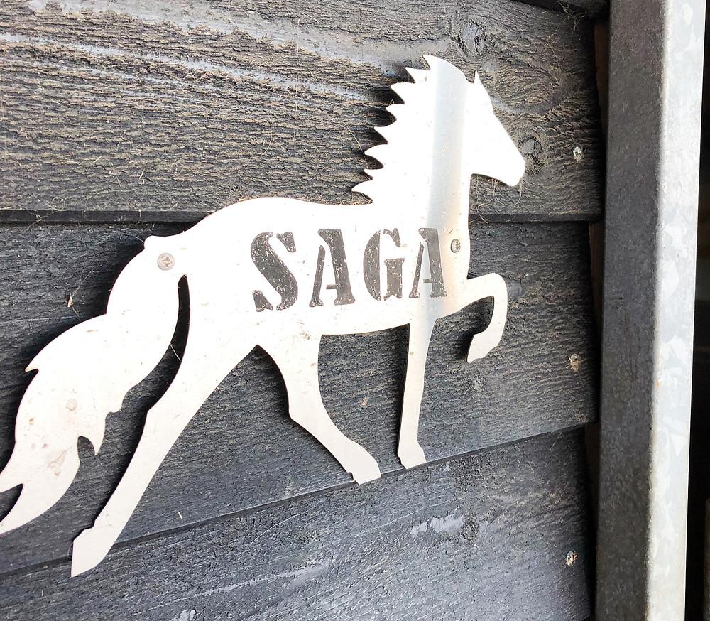 Navneskilt islandsk hest